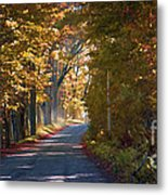 Autumn Country Road - Oil Metal Print