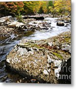 Autumn Cranberry River Metal Print