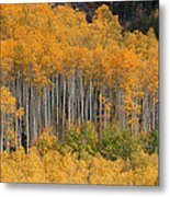 Autumn Curtain Metal Print