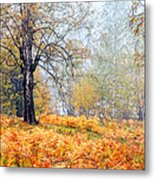 Autumn Dreams Metal Print