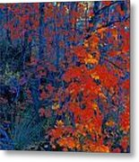 Autumn Foliage Metal Print