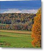 Autumn Foliage  Metal Print