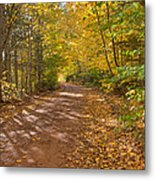 Autumn Foliage On A Country Road Metal Print