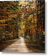 Autumn Forest 3 Metal Print