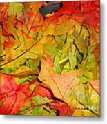 Autumn Gathering Metal Print