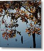 Autumn Gold On The Water Metal Print