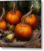 Autumn - Gourd - Pumpkins And Some Other Things  Metal Print