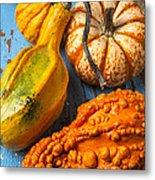 Autumn Gourds Still Life Metal Print