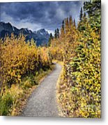 Autumn In Alberta Metal Print