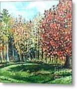 Autumn In My Backyard  Metal Print