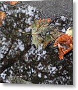 Autumn In New York City Metal Print by Chris Ann Wiggins