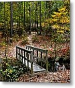 Autumn In Raleigh 001 Metal Print