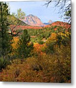 Autumn In Red Rock Canyon Metal Print
