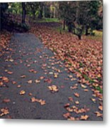 Autumn In St Fagans Park Cardiff Metal Print