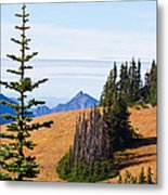 Autumn In The Olympics Metal Print