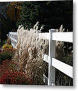 Autumn Is In The Air Metal Print