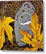 Autumn Ladybugs Metal Print