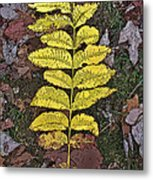 Autumn Leaf Art I Metal Print