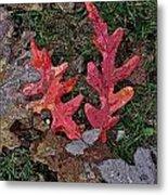 Autumn Leaf Art IIi Metal Print