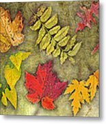 Autumn Leaf Collage Metal Print