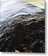 Autumn Leaf On River Rock Metal Print by Elena Elisseeva