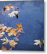 Autumn Leaves Drifting Metal Print