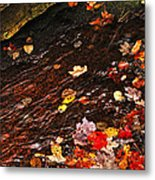 Autumn Leaves In River Metal Print