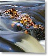 Autumn Leaves In Water Metal Print