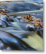 Autumn Leaves In Water IIi Metal Print
