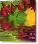 Autumn Leaves In Water With Reflection Metal Print