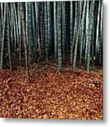 Autumn Leaves Litter The Ground Metal Print