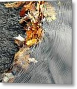 Autumn Leaves Tiny Dam Metal Print