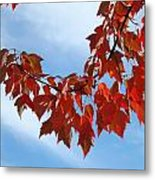 Autumn Leaves Tree Red Orange Art Prints Blue Sky White Clouds Metal Print