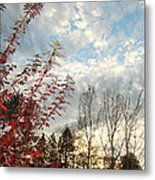 Autumn Maple And Sky Metal Print