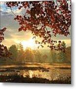 Autumn Morning At Harvard Pond Metal Print