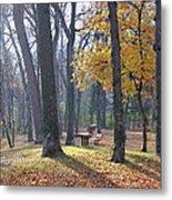 Autumn Morning Munson Park  Metal Print