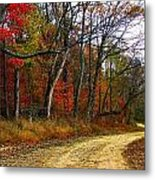 Autumn On Bottomland Road Metal Print
