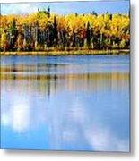 Autumn On Chena Lake L Metal Print