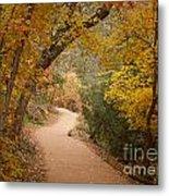 Autumn On Emerald Trail Metal Print
