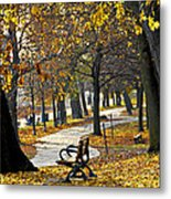 Autumn Park In Toronto Metal Print by Elena Elisseeva