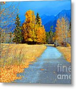 Autumn Perspective Metal Print
