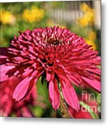 Autumn Pink Metal Print