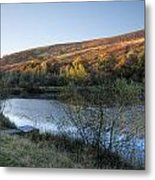 Autumn Pond 3 Metal Print