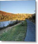 Autumn Pond 5 Metal Print