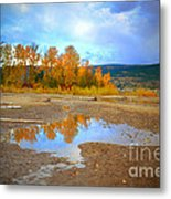 Autumn Puddles Metal Print