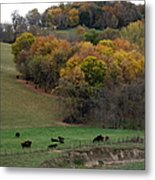 Autumn Range Metal Print
