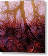 Autumn Reflections  Metal Print by Xoanxo Cespon