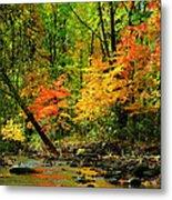 Autumn Reflects Metal Print