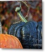 Autumn Riches Metal Print
