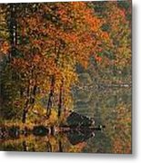 Autumn Scenic Metal Print
